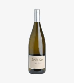 Morillon Blanc by Jeff Carrel